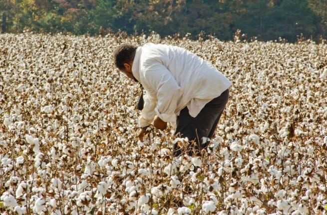 Photo Credit: www.Afroculinaria.com